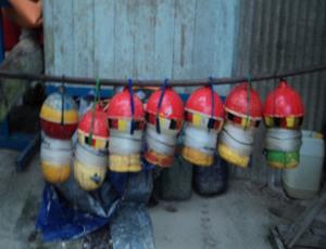 Gambar 2: Alat Tangkap Tradisional yang digunakan untuk menangkap Ikan Hiu