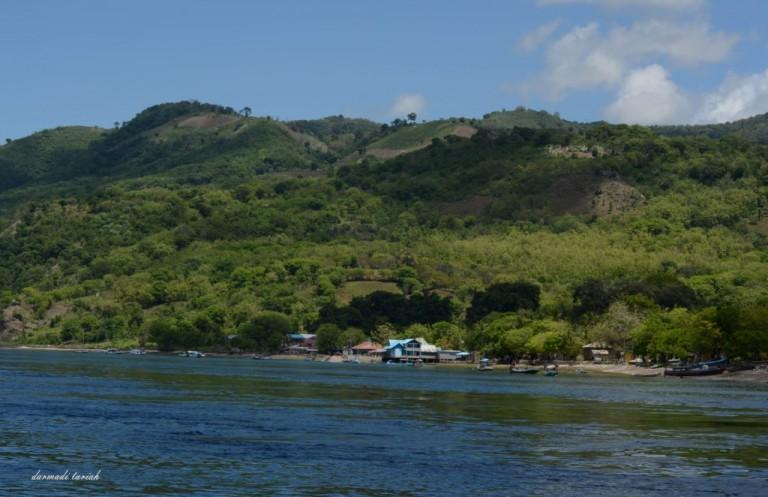 Cahaya di Pulau Treweng