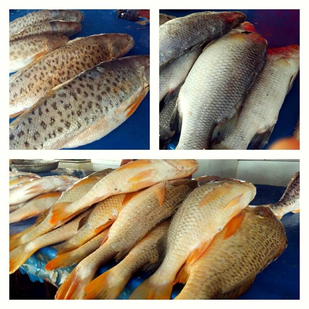 Ikan yang dipasarkan di Pasar Tanah Merah, Nunukan (foto: Kamaruddin Azis)