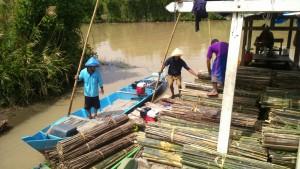 Pemindahan ajir dari kapal ke perahu kecil