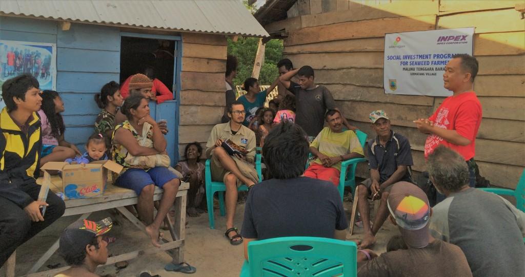 Solusi Rumput Laut Indonesia