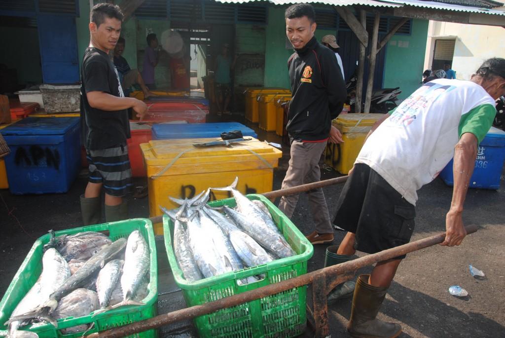 Aktivitas perikanan di Belitung Timur (foto: DFW-Indonesia)