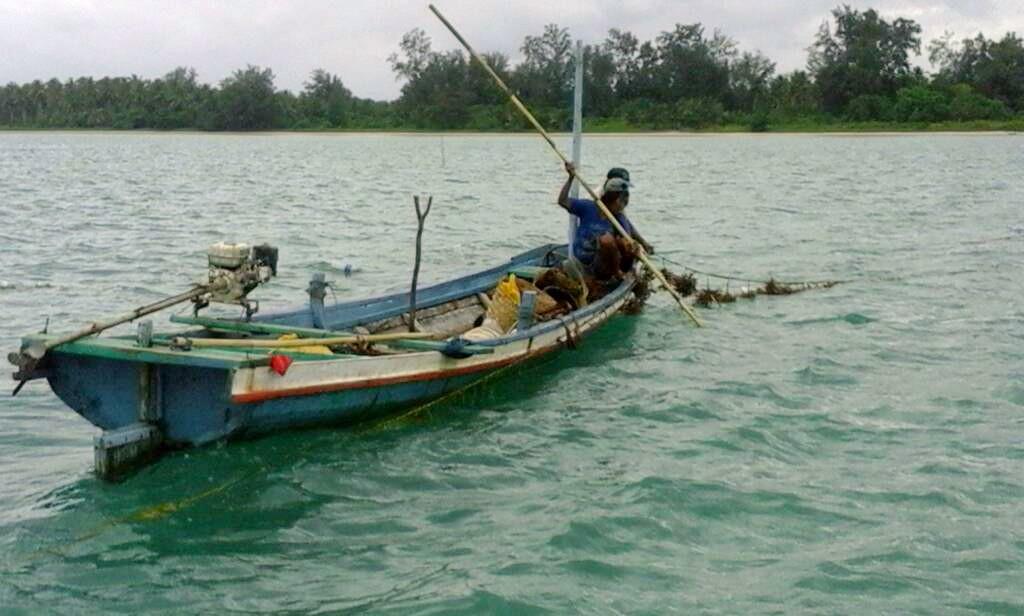 Kebijakan Pemerataan Ekonomi Belum Sentuh Nelayan dan Pembudidaya Rumput Laut
