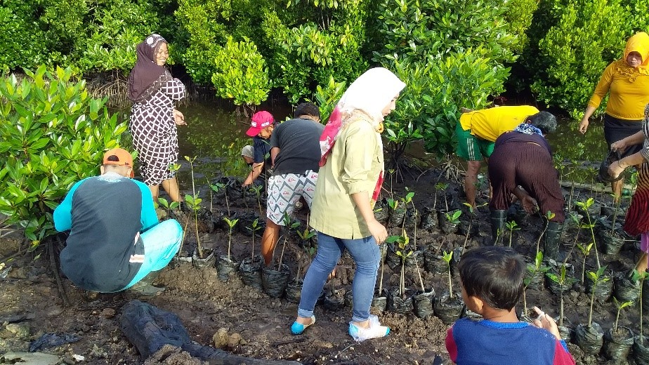 Aktifivitas Ibu-ibu Desa Rumba-rumba dalam Pembibitan Mangrove