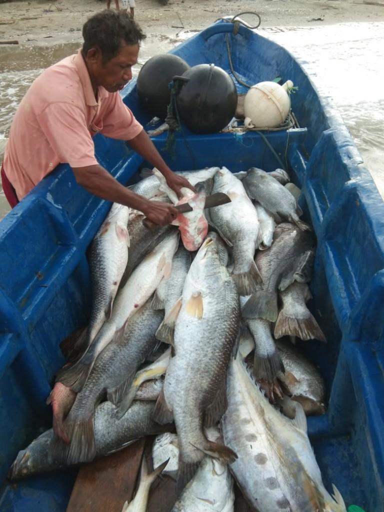 Nelayan Kepulauan Tanimbar yang baru pulang melaut.